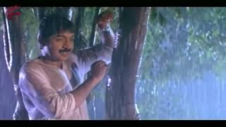 Jallu Ammo Jallu Video Song    Papakosam  Movie     Rajasekhar, Shobana, Shamili   MovieTimeCinema