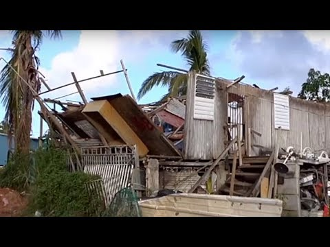 The Privatization of Puerto Rico's Public Schools Has Begun