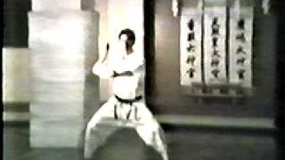 Tekki Nidan Shoto-kai Karate Do Kata