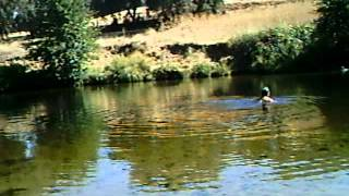 Swimming at Spenceville Pond, Yuba County