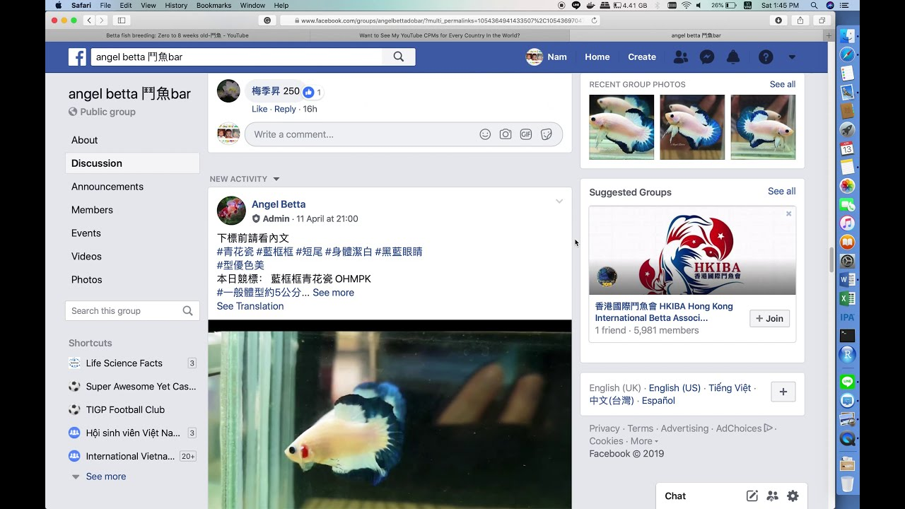 How to buy betta fish from online market in Taiwan Part-2