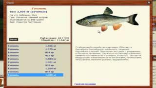 Русская рыбалка 3.99 Ловля Голавля на Лопасне (Для отвара удачи).