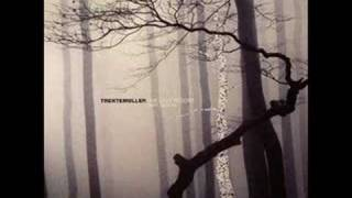 Trentemoller - Into the Trees