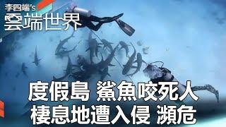 度假島 鯊魚咬死人 棲息地遭入侵 瀕危 - 李四端的雲端世界