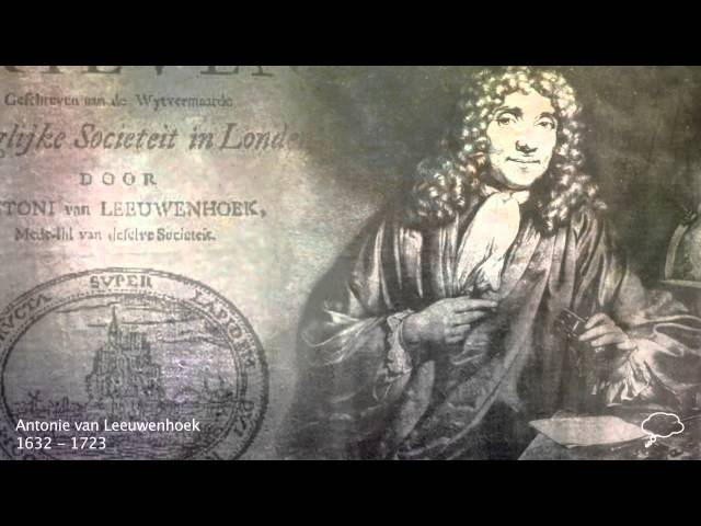 what is anton van leeuwenhoek famous for