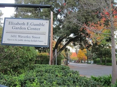 Elizabeth F. Gamble Garden Historic Home & Garden. California, USA