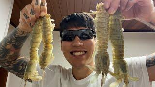 갯가재 잡아서 버터구이,된장찌개 해먹는 괴물