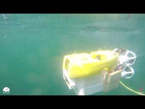 Stinger Nano ROV sea trial (3 min)