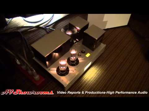 Acoustic Zen, Triode Corp Twin Audio Video