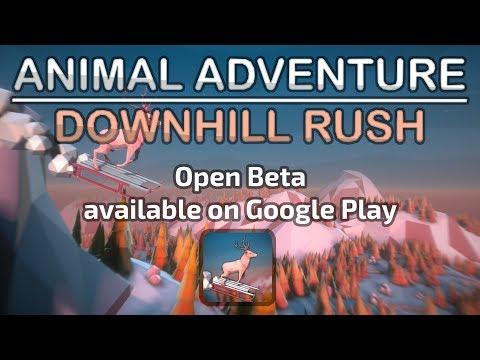 Animal Adventure: Downhill Rush 1