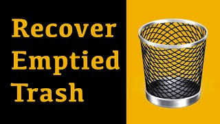 The Easiest Way To Recover Deleted Files from Emptied Trash - Recoverit