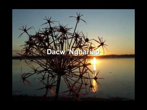Eve Goodman - Dacw 'Nghariad [Welsh folk song]