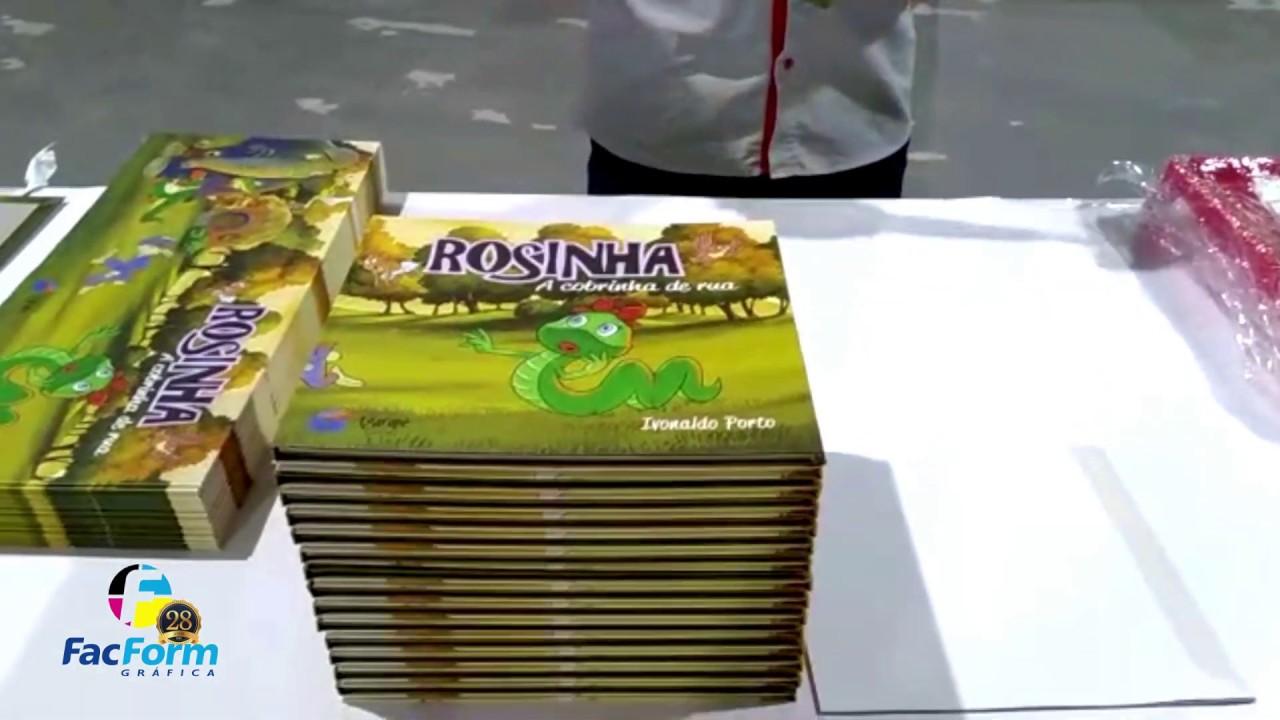 Produção do Livro Rosinha