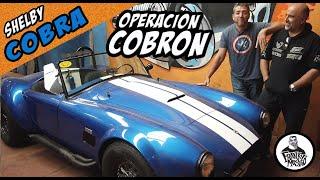 Shelby Cobra- Vamos por más veneno. 🐍 Operación Cobrón, Capitulo 1