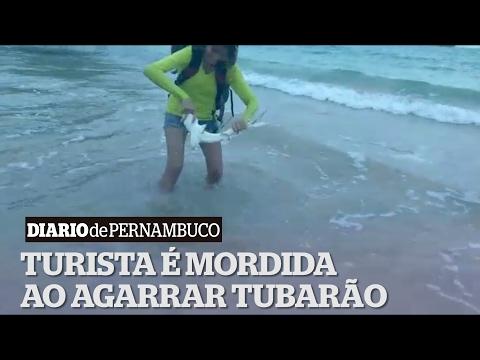 Vídeo: Turista pega tubarão para tirar selfie, mas é mordida e acusada de crime ambiental