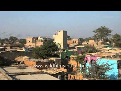Panoramic View Of Bhati Or Bhatti Mines Urban Village In Delhi