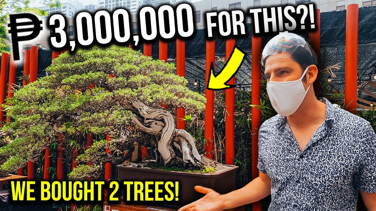 We can't believe we BOUGHT THIS for our NEW MANILA CONDO!!