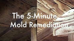 The 5-Minute Mold Remediation with OxyPrep and Oxypar LR (aka The REACT/EXTRACT Remediation System)