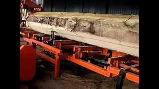 Wood-Mizer LT70 sawing yellow meranti in Malaysia