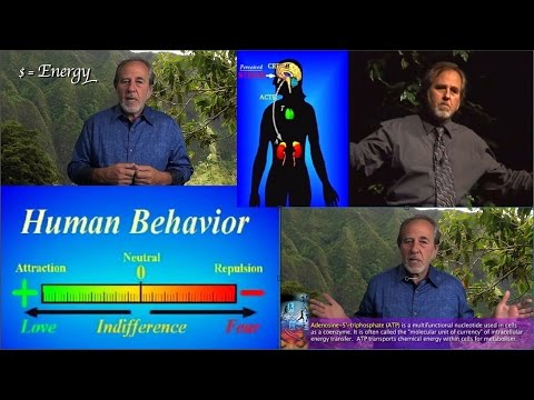Bruce Lipton - Fear vs Love State and Stress's Effect on Your Body