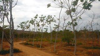 La Caprichosa: Un paraíso natural