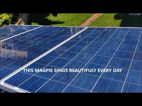 HOW TO CLEAN YOUR SOLAR PANELS EFFICIENTLY AND SAFELY - SOLAR ARRAY WASHING