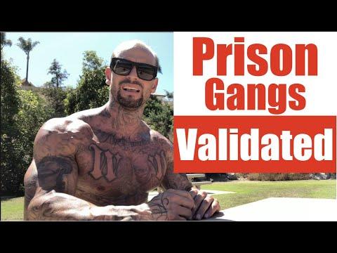 Prison Gangs- Validated