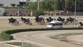 Vidéo de la course PMU PREMI LICOS DU COURTILLE