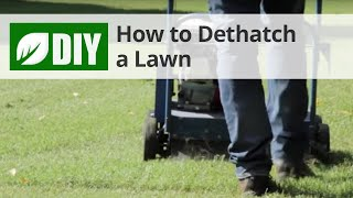 How to Dethatch a Lawn - Dethatching Tips
