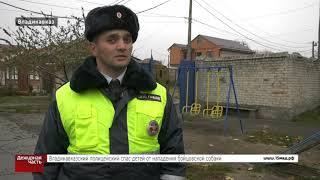 Полицейский спас мальчика от собаки. Владикавказ.