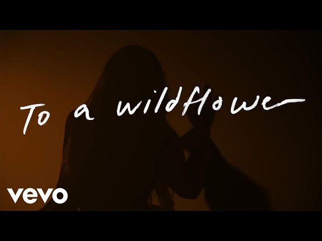 Tenille Townes - White Horse (Lyric Video)