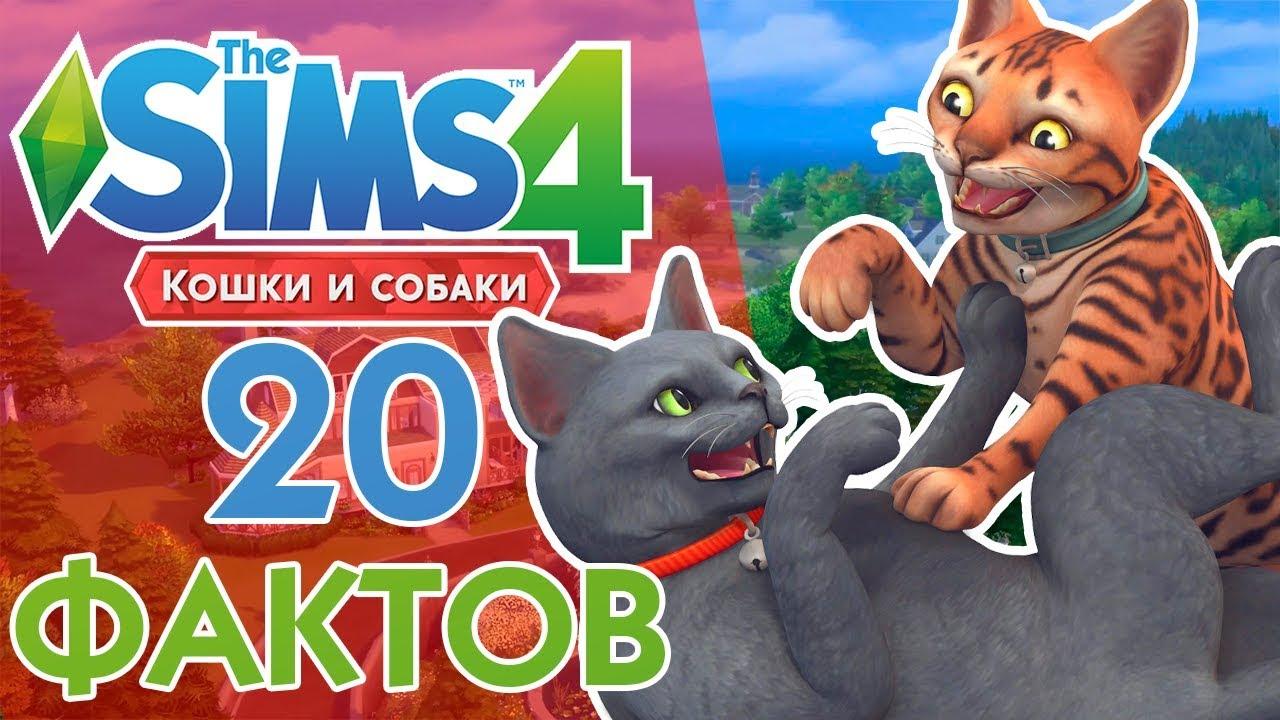 Собаки в The Sims 3 Питомцы (Симс 3 Собаки - Большая) 34