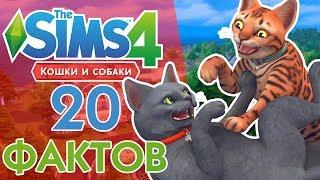 THE SIMS 4 КОШКИ И СОБАКИ - 20 ФАКТОВ!