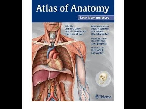 Download FREE !!! Atlas of Anatomy, Latin nomenclature - YouTube