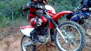 Trilhas de Moto - Estreando  CRF 230