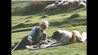 ლომა, დავიწყებული მეგობარი. 1982 წ. (ქართულად)
