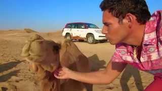 Desert Dune bashing - Abu Dhabi