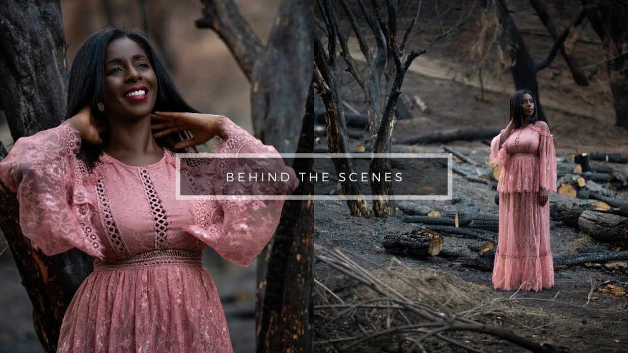 Shoot in Burnt Forest