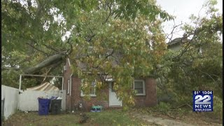 Tree falls on house seconds after Springfield mother's quick-thinking to save kids