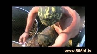 Сазан 26 кг. Волга.