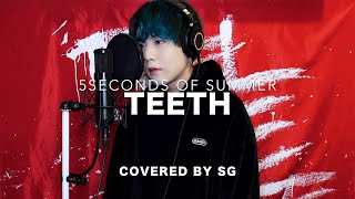 Download Teeth / 5 Seconds of Summer ( cover by SG )