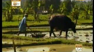 Urdu Documentary(Rizk Aik Neymat)Part,1.By Visaal