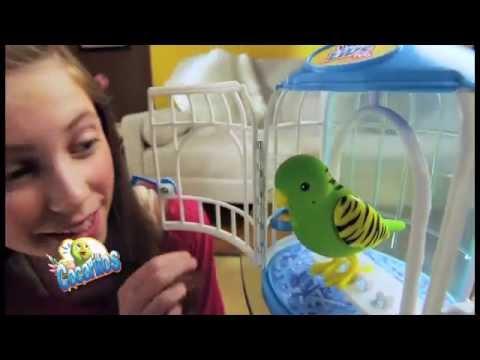 Toys Center Italia - I Cocoritos, i pappagalli che parlano proprio come te