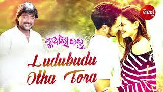 Ludu Budu Otha Tora Haladi Gina Superhit Masti Song by Bibhu Kishore   Sidharth TV