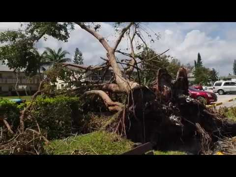 Florida Hurricane Irma Damage