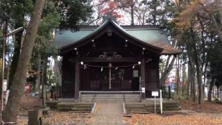 2016年11月23日撮影。 東京都八王子市台町2-2にある富士森公園浅間神社...