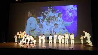 Publication Date: 2019-07-03 | Video Title: 東華三院鶴山學校2019年「鶴・藝」綜合晚會 - 跆拳道 :