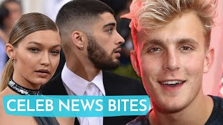 Jake Paul RESPONDS To Gigi Hadid After She Dragged Him For Coming After Zayn Malik!