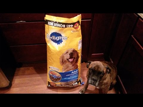 pedigree-complete-nutrition-chicken-flavor-dog-food-review