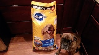 Pedigree Complete Nutrition Chicken Flavor Dog Food Review | Jay Rule